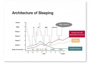 Architecture of sleeping
