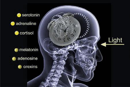cortisol zu hoch ursachen
