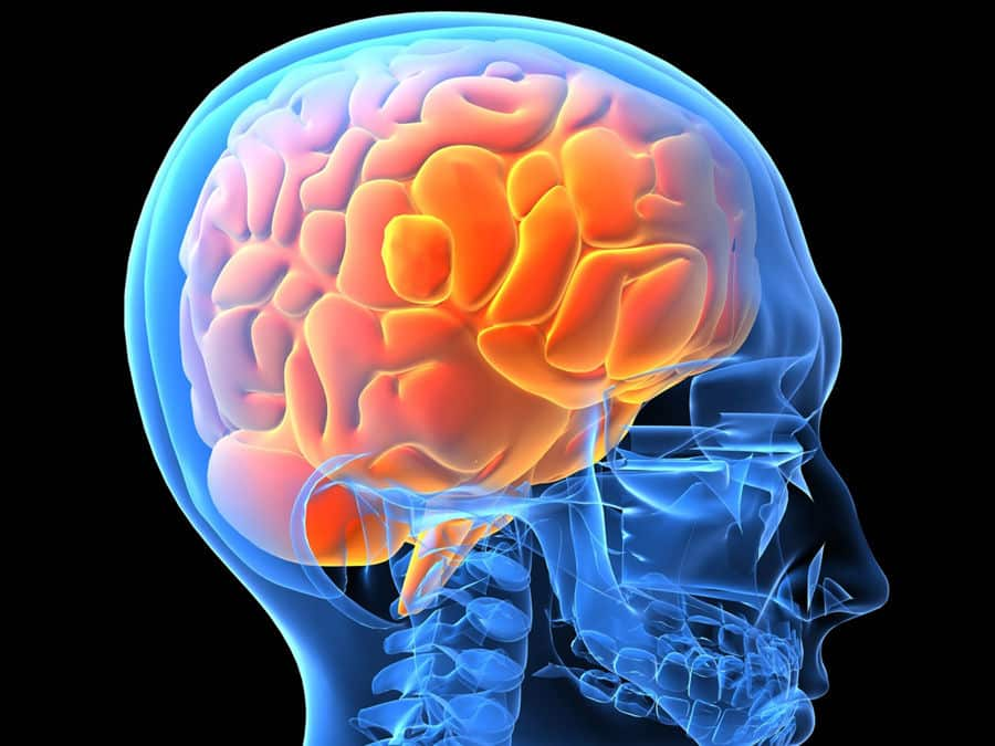 Gehirnwellen - Beta, Alpha, Theta, Delta