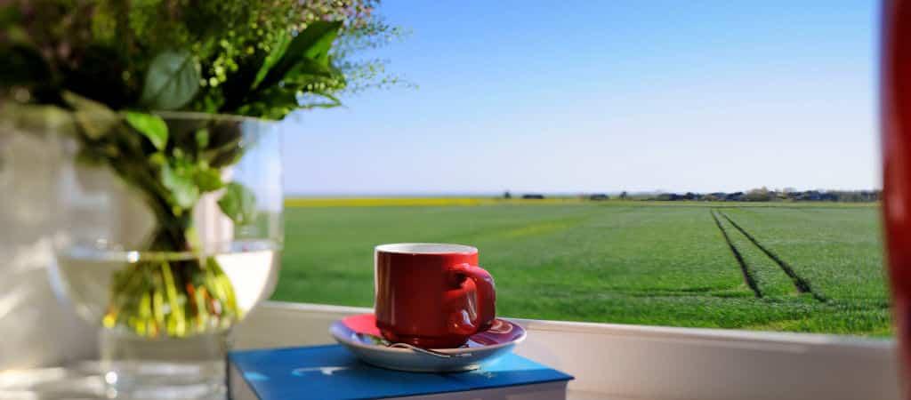 hotel-senhoog-buch-und-kaffee-1024×450